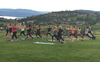 Yoga at the winery: Quail's Gate Summer Yoga Series with Westbank Oxygen