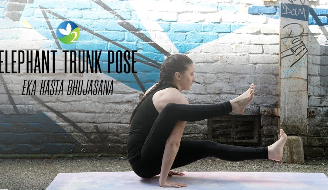 Pose of the Week Guide: Elephant Trunk Pose