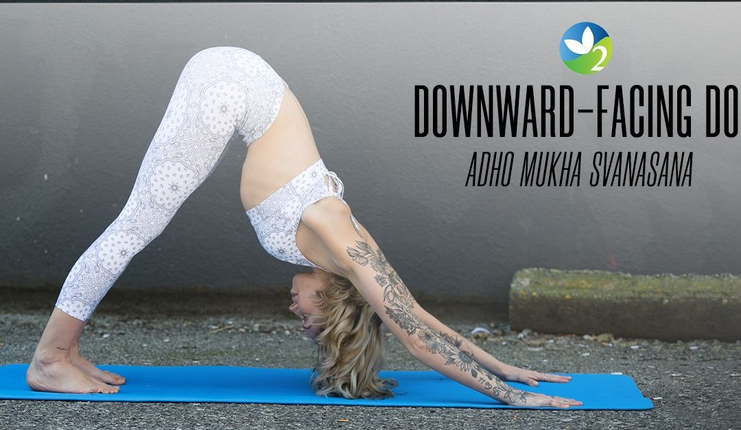 Pose of the Week Guide: Downward Facing Dog Pose