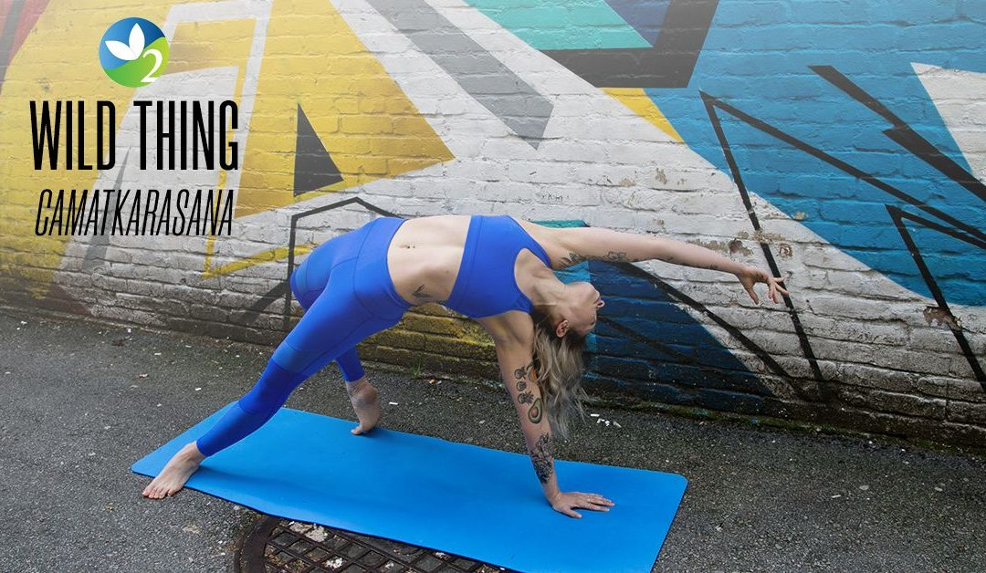 Pose of the Week Guide: Wild Thing Pose