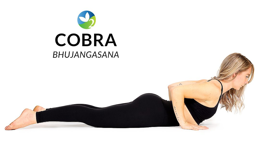 Pose of the Week Guide: Cobra Pose